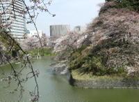 Chidorigahuchi_0326