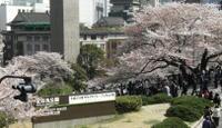 Sakurano_nyuugakushiki