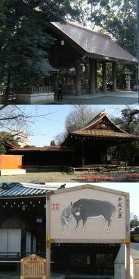 20081225_yasukuni