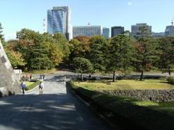 20091118_higashi_1