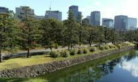 20091118_higashi_2