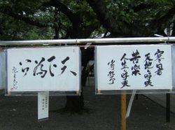 2011_mitamamaturi_2