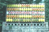Mitama_matsuri_koukoku