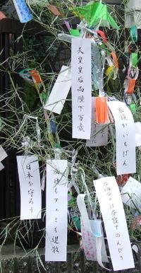 Tanabata_2007